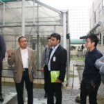 Visiting MIMOS Facility_Fish Pond